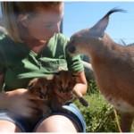 Lea Kittens 3